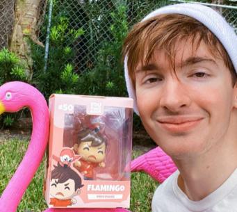 Flamingo Net Worth